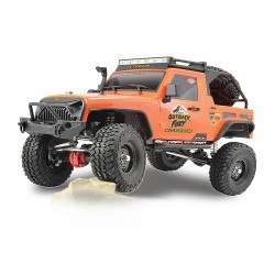 FTX OUTBACK FURY EXTREME 4X4  1:10 TRAIL CRAWLER