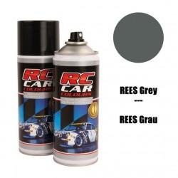 RC CAR COLOUR GRIS REES