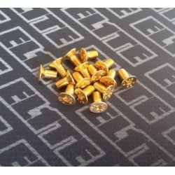 ELITE GOLD TORNILLERIA AVELLANADO M3X6 (10PCS)