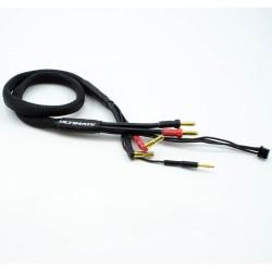 CABLE CARGA 2S DE 60 CM CON CONECTORES 4/5MM