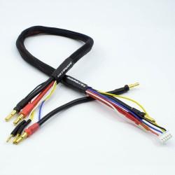 CABLE CARGA 2X2S DE 60 CM CON CONECTORES 4/5MM