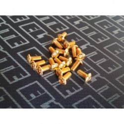 ELITE GOLD TORNILLERIA BOTON M3X8 (10PCS)